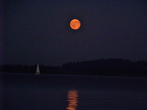Full Sail -  Boat In The Full Moon by WETCLOUD