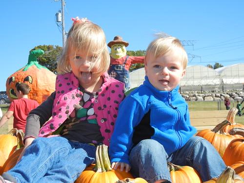 My LIttle Pumpkins