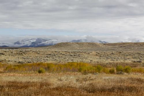 Montana-textures