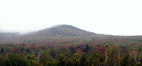 Fall Colors by Varish