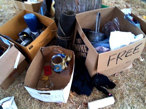 Free pile around tree