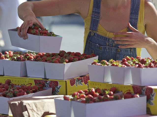 SF Farmers Market 005