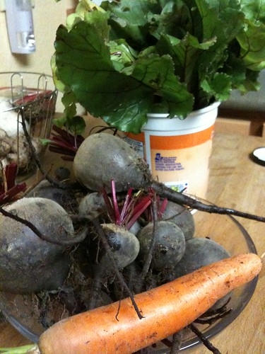 beets, greens, and carrots from the garden