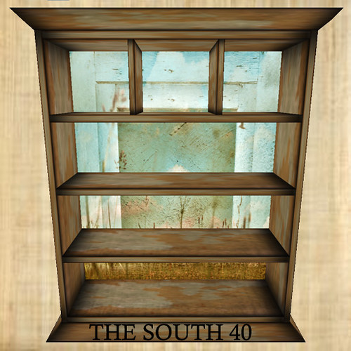 THE SOUTH 40