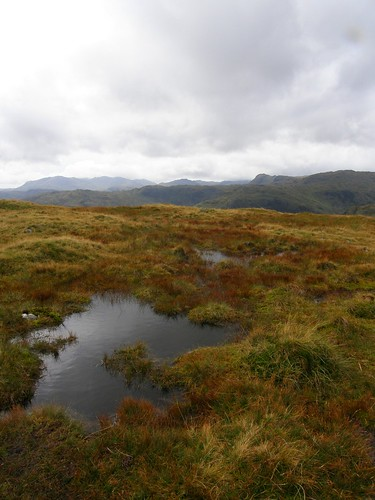 Looking towards the Langdale Pikes