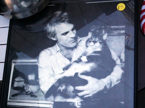 Framed Steve Martin With Cat