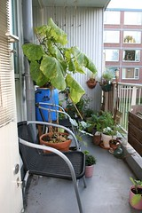 Balkon 19-09