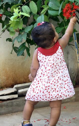 Sew - Cherry Print Dress - H