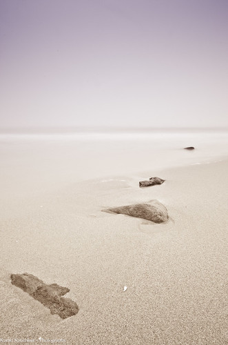 Sandyhook Beach, NJ
