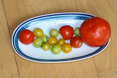 Tomaten met de grote broer uit de supermarkt