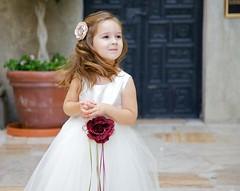 [フリー画像] 人物, 子供, 少女・女の子, 結婚式, 201109200700