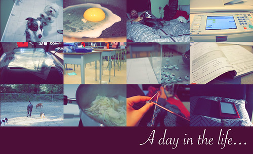 A31 - A day in the life