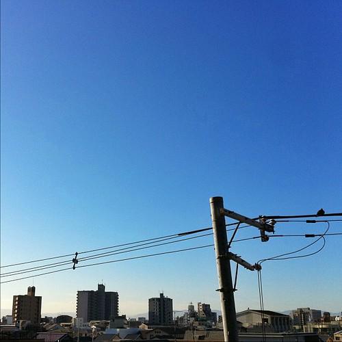 (゚д゚)ォ-(゚Д゚)ハー(゚A゚)ョ-…ヽ(゚∀゚)ノゥゥゥゥウウウ!!  今朝は、雲一つないイイ天気だね! #ohayo #iphonography #instagram