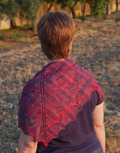 Cleite Shawl: back