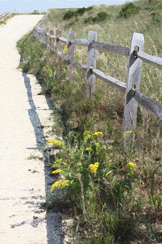 Fall Fence by sslyb