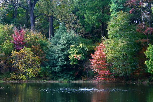 Lake and changing fall colors