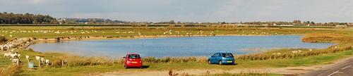Lagoon at Pett Levels, near Rye in Kent