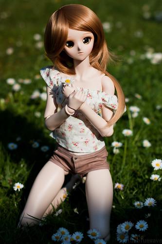 Kyouko and daisies