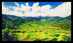 Bản Khau Phạ