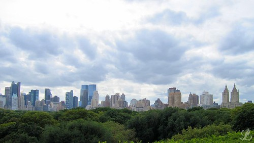 Looking out over Central Park