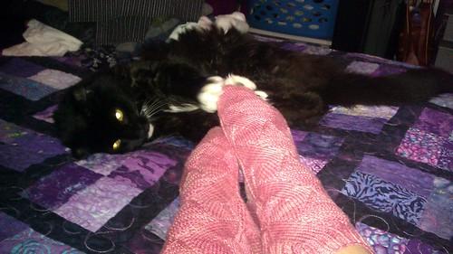 Wally and the socks