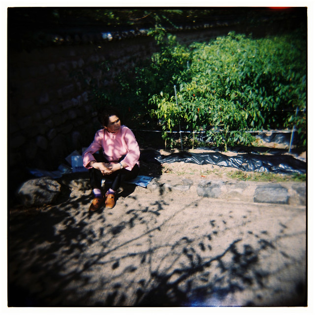 BLOG: OCTOBER HOLGA DROP
