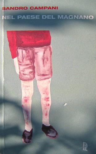 Sandro Campani, Nel paese del Magnano; italic 2010; Grafica di copertina di Giordano Giunta. copertina (part.), 1