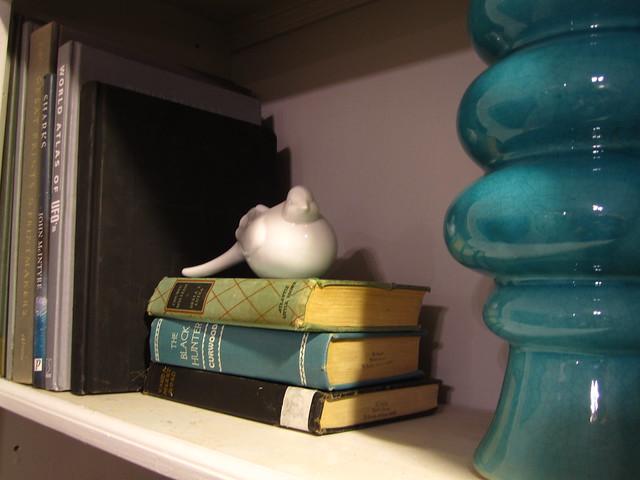 New Bookshelves1