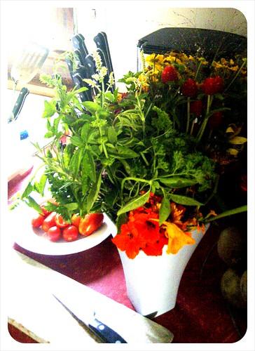 farmstand herbs