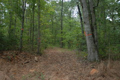 New Trail Markers
