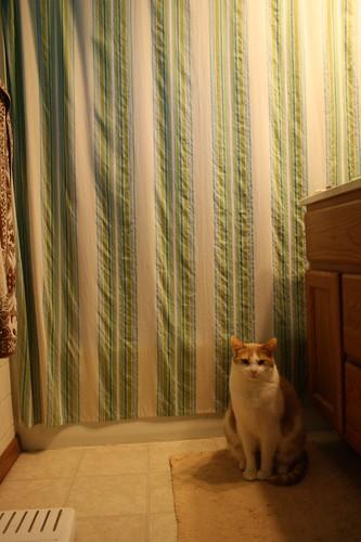 Karma in bathroom morning