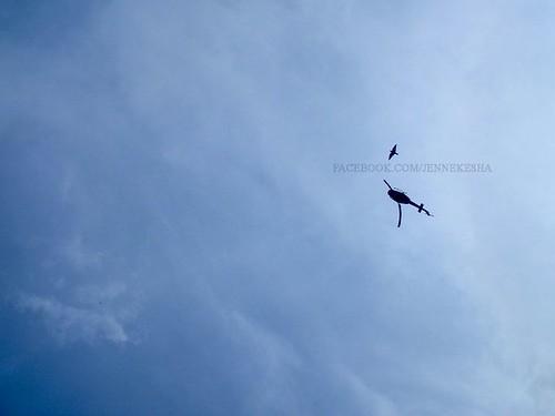 Fly high by jennekesha
