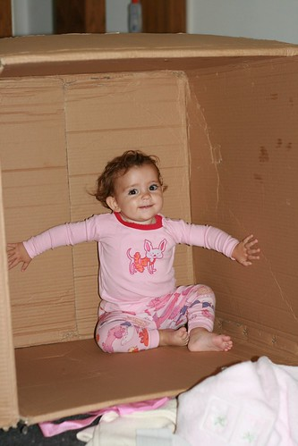 Best use of a cardboard box 2