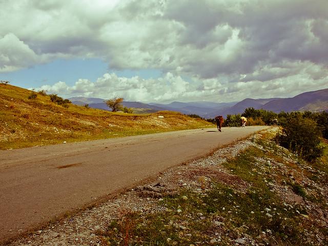 Amintirile de pe Valea Doftanei