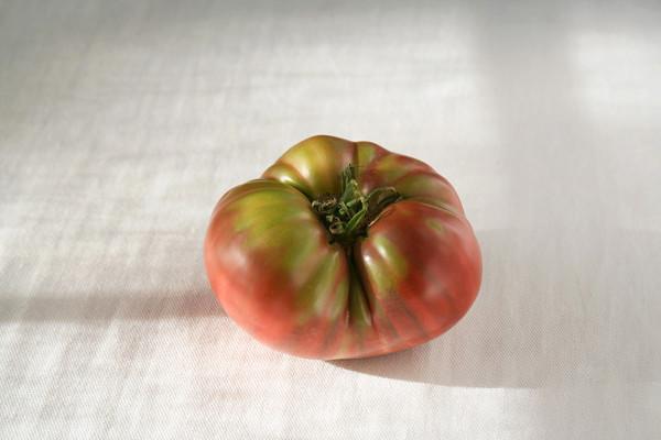 beautiful_tomato