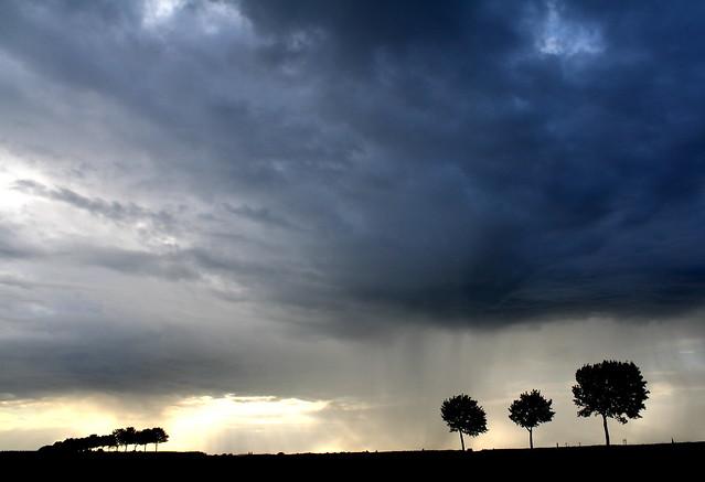 More Storm