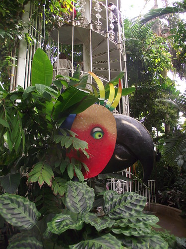 giant parrot in the palm house