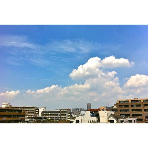 最近、飛行機雲と縁があるらしい。雲間から一本線が…。 #iphotography #instagram