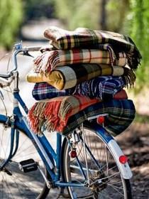 plaid blankets bike