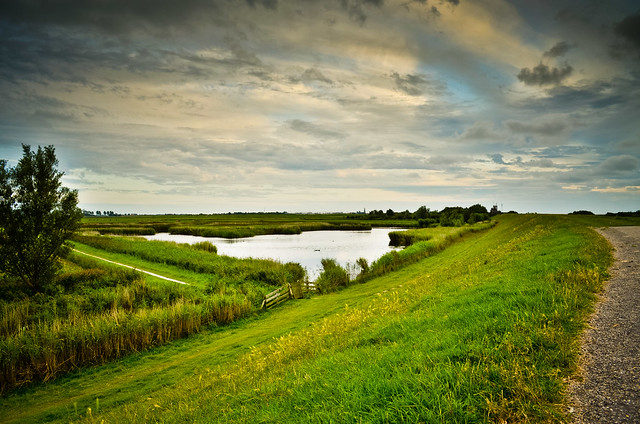 Friesland...