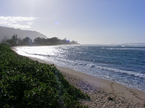 Picture from Oahu's North Shore