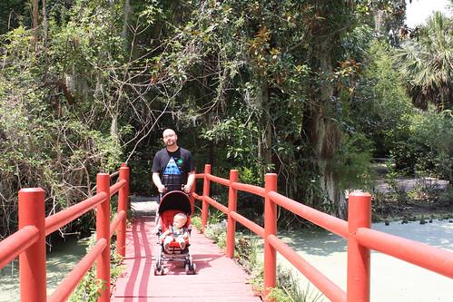 8.16 magnolia bridge