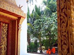 Monks chatting, Luang Prabang