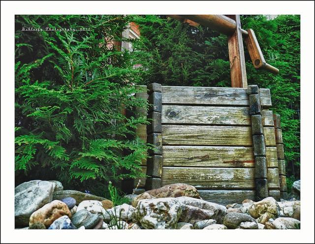 #231/365 Wood Well