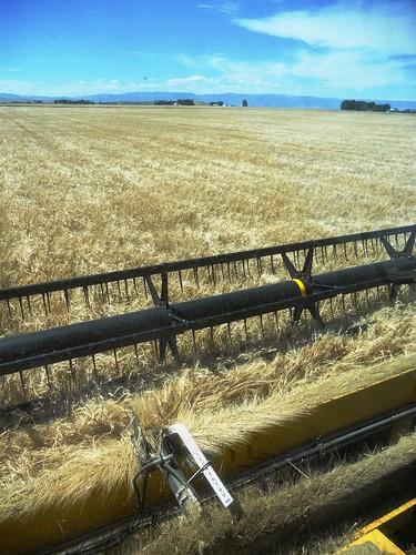 View of combine