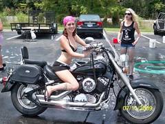 kitten_motorcycle