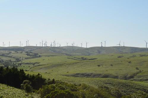 風力発電いっぱい