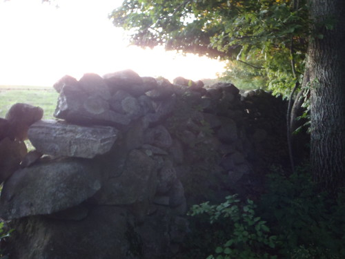 New England Stone Wall, Gallup Road, Connecticut