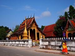 Monk on the way to class, Luang Prabang