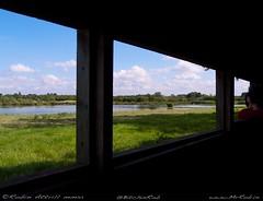 2011-08-25-RiponCanalWalk-P8250006